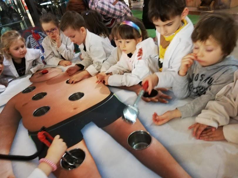 Corpul Uman – Expoziție educativă, interactivă
